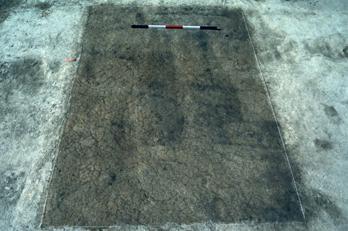 JC298[115,116 -  Pre excavation shot of pair of burials