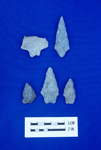 NC298-732 Projectile Pointes from plowzone